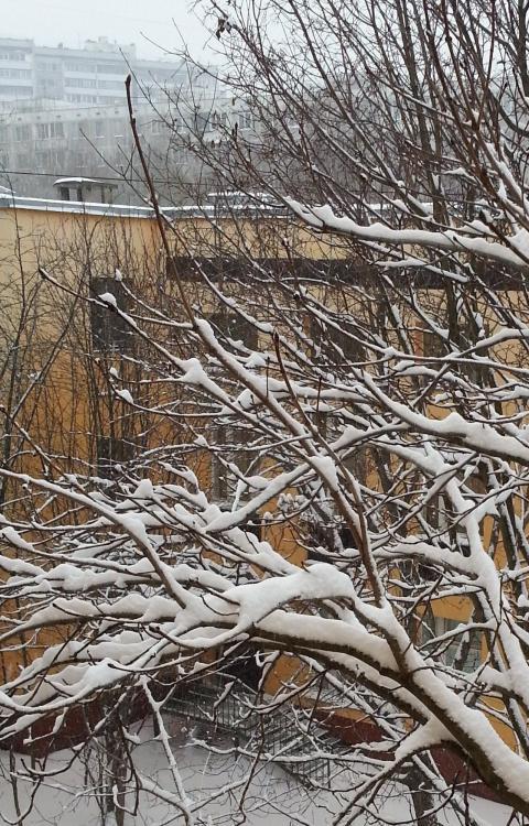 Наступление зимы